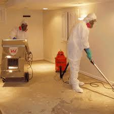 Our mold removal services in a NYC home